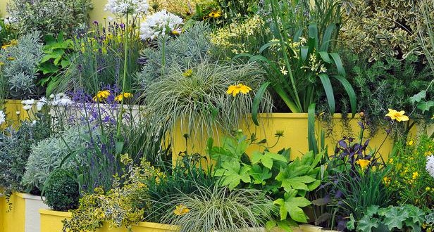 How to Gardening in Small Spaces