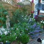 Ideas for Small Gardens 150x150 How to Gardening in Small Spaces