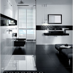 Modern Black and White Bathroom Design Inspirations