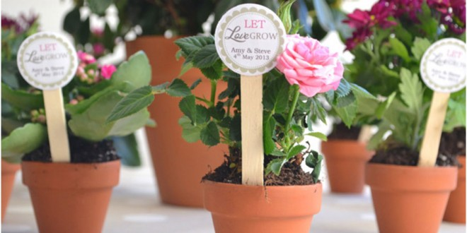 The Uses of Chalkboard Flower Pots