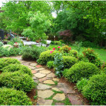 Planning Backyard Gardening Ideas 150x150 Front Yard and Backyard Planning