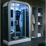 Futuristic Bathroom with Steam Shower Room