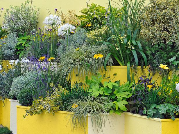 Container and Small Spaces Gardening Ideas
