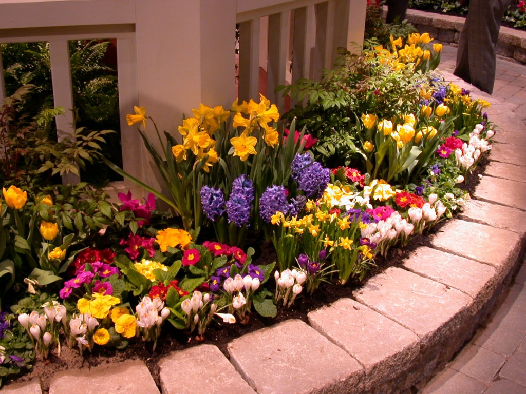 Flower Gardening Ideas in Small Spaces