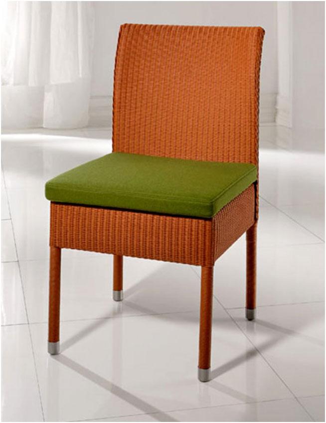 Green Cushion on Modern Dining Room Chair