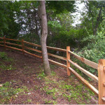 Red Cedar Split Rail fence