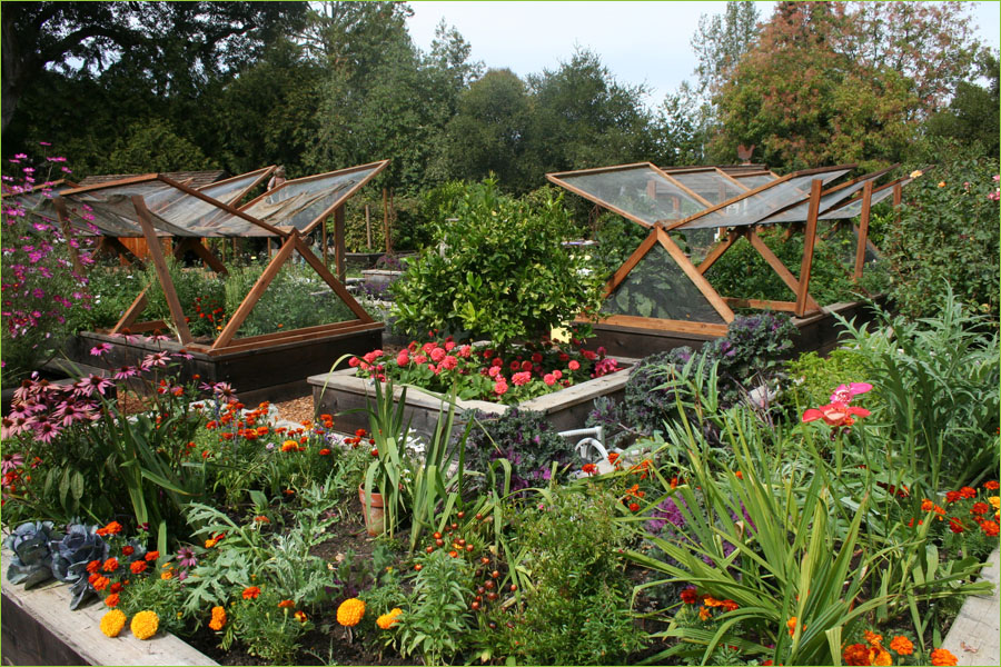 Small Space Vegetable Gardening Ideas