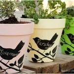 Chalkboard Flower Pots with FolkArt Stencils