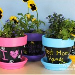 Chalkboard Paint on Flower Pots