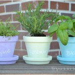 Chalkboard Painted Pots for a Mini Herb Garden
