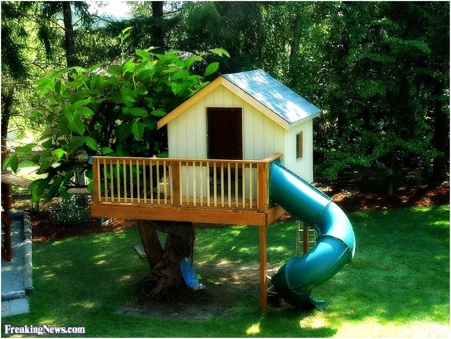 Funny Tree House in Backyard
