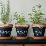 Mini Chalkboard Flower Pots Decoration