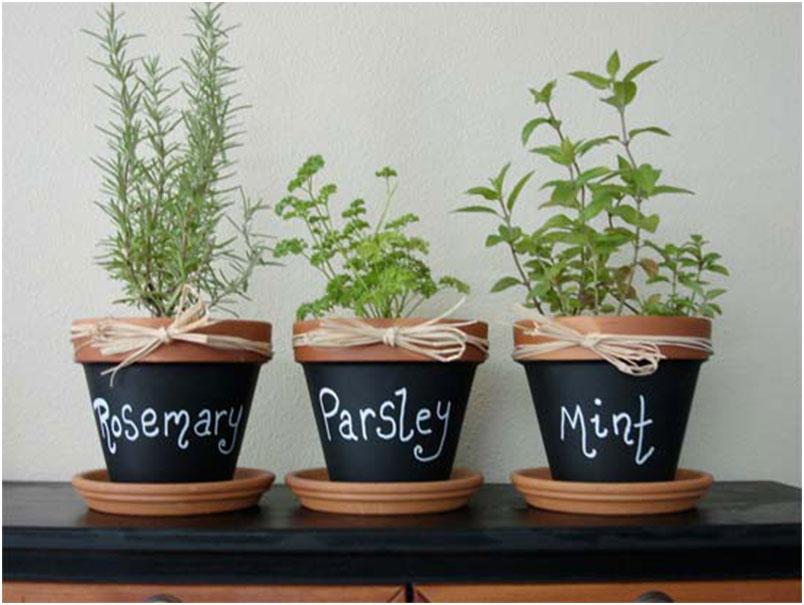 Mini Chalkboard Flower Pots Decoration