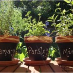 Mini Chalkboard Herb Decoration