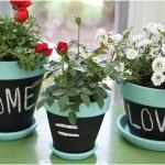 Nice Mini Chalkboard Flower Pots