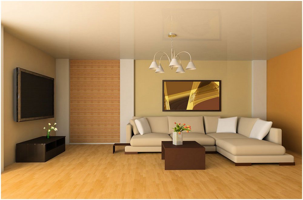 Elegance Living Room in European Home Design