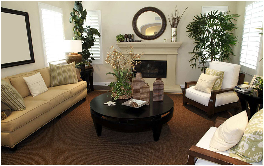 Living Room Design Ideas with Brown Carpet