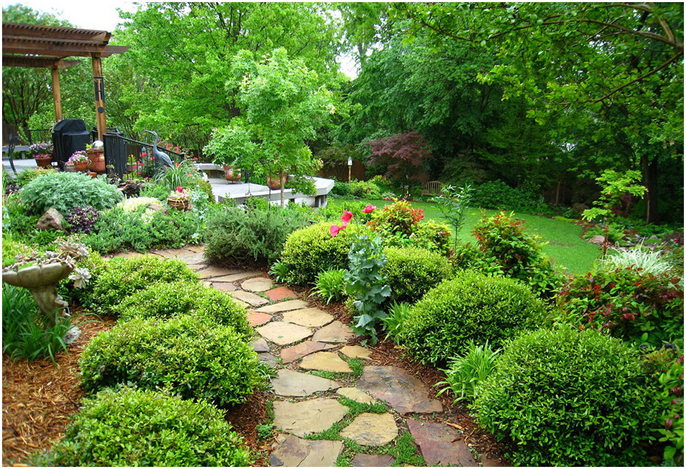 Planning Backyard Gardening Ideas
