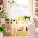 Interior Design Tricks  Tips For Interior Design Pars Diplomatic